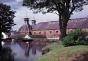 Bushmills_Distillery
