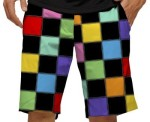 Loudmouth shorts - hollywood squares - cropped